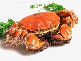啥!美国卫生局叫停华人吃蟹黄,因为其可能致癌
