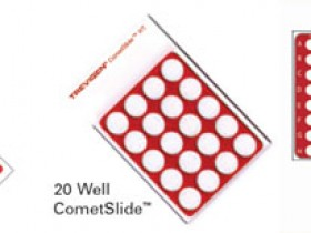 CometSlide™彗星分析专用载片与载片架