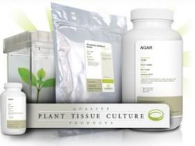N6培养基配制—Chu's N6植物组织培养基