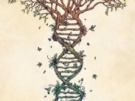 科学家放言:十年内人工合成完整的人类细胞