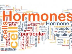 激素(hormones)检测试剂盒汇总—激素检测全指南