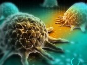 癌症治疗的新途径——非特异性癌症免疫新疗法