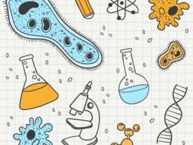 【干货】重组蛋白表达和纯化分析