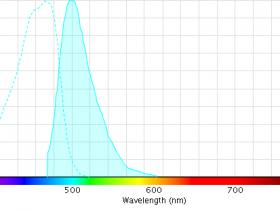 AmCyan抗体推荐-蓝色荧光蛋白AmCyan标签抗体