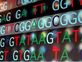 基因测序与基因芯片的异同