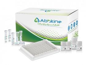 推荐人 ICAM-1/CD54 ELISA试剂盒,高效、灵敏、可靠!