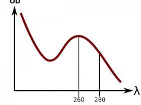 推荐StrandBrite™RNA定量试剂盒(荧光法)
