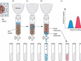 凝胶层析的原理、特点及分类简析