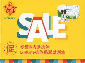 LinKine抗体偶联试剂盒&标签内参抗体,贺岁来袭!