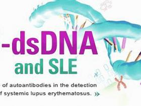 系统性红斑狼疮(SLE)血清学标志物(抗dsDNA抗体) 检测试剂盒