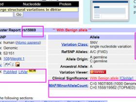 使用dbSNP和ClinVar数据库分类基因变异体