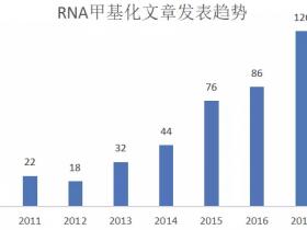 科研热点:RNA甲基化研究必看高分文章
