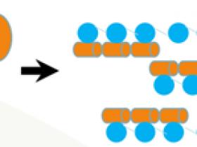 全新的K63多聚泛素的分离和富集方案