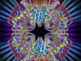 乳酸脱氢酶同工酶检测在临床上的意义