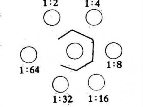 多肽抗原制备多抗的过程简介