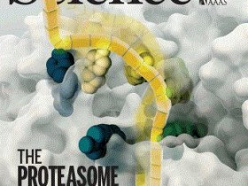 《Science》:三分钟速读精彩文献