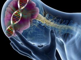 Cell&Nature:血清素相关研究最新进展