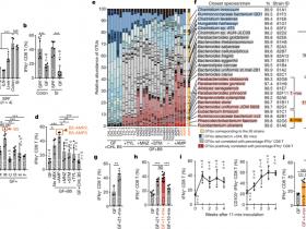 生物评论周报第67期:Nature:诱导CD8 T细胞的11株肠道菌,或能强化癌症治疗