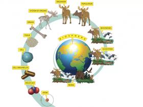 Abbkine小百科:生命科学中有趣的数字