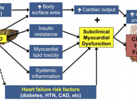 非酒精性脂肪性肝病(NAFLD)的新型标志物:PR3,NE和AAT
