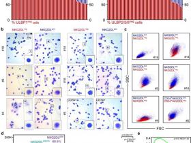 生物评论周报第88期:Nature:发现惊人机制:让免疫系统找到癌症干细胞