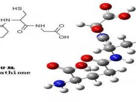 谷胱甘肽测定的意义和方法