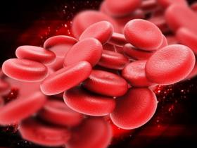 血管表皮生长因子(VEGF)与肿瘤生长