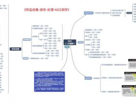 【新冠病毒-Part 3】样本收集保存、处理、NGS测序...