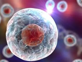 Sciencedaily:自然杀伤细胞可以阻止帕金森综合征恶化