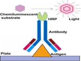 """""""艾""""学习丨IVD系列之化学发光免疫分析技术"""