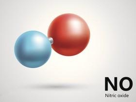 代谢专栏|如何快速选择一氧化氮(NO)检测试剂盒?