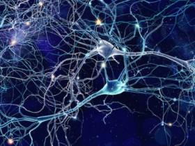 想知道你的大脑是如何形成记忆的吗?