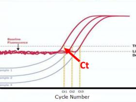 实时荧光定量PCR技术:染料法VS探针法