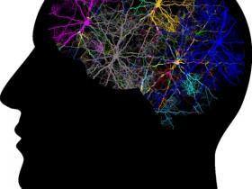Biosensis的神经肽及其受体研究相关抗体