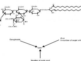 新品尝鲜:Matreya的神经节苷脂