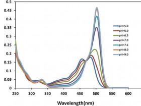 细胞内pH怎么测?荧光pH探针来帮忙