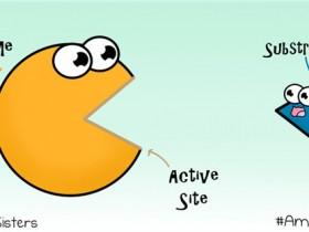 【酶库】酶(Enzyme)是什么?上千种蛋白酶库别溜走!