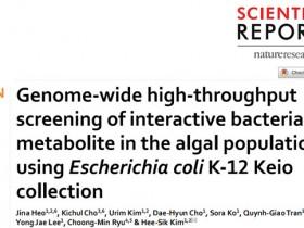 大肠杆菌K-12 Keio,有效高通量筛选赤潮藻类中的细菌代谢产物