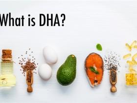 """""""脑黄金""""二十二碳六烯酸(DHA)相关科研工具一览"""