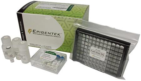 细胞核蛋白提取试剂盒—EpiQuik™ Nuclear Extraction Kit
