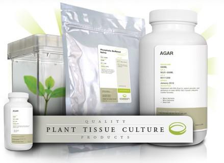 B5培养基配制—Gamborg's B5植物组织培养基