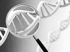 gene-discovery