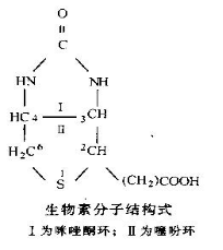 biotin-molecular-structure