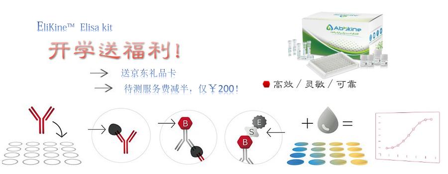 EliKine™高效、灵敏、可靠的ELISA试剂盒全新上市