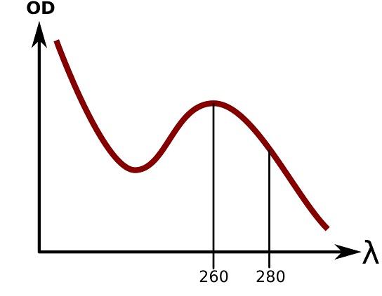 吸光度曲线