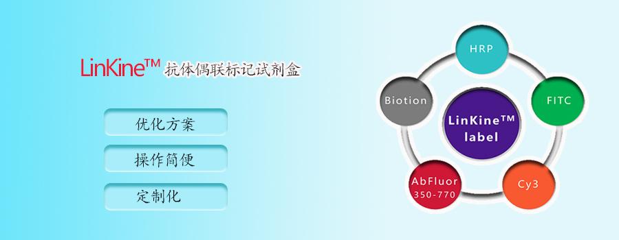 LinKine™-抗体偶联标记试剂盒家族全新上线