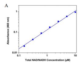 NAD/NADH 比率试剂盒