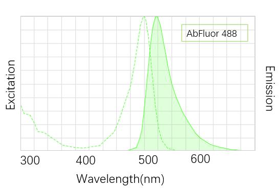 AbFluor-488