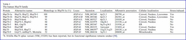 热休克蛋白,HSP70