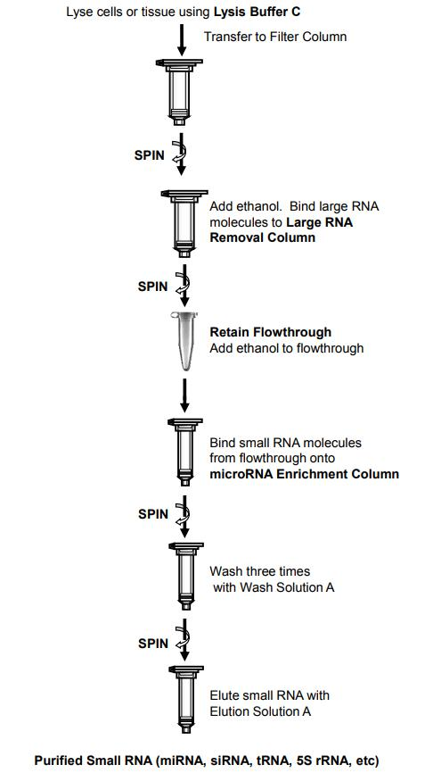 microRNA提纯试剂盒提取RNA流程图